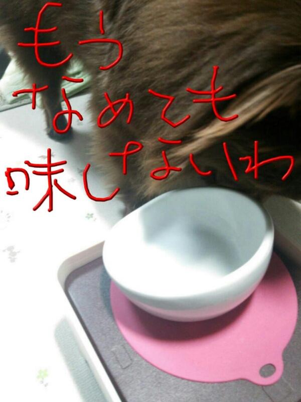 d0177473_22143585.jpg