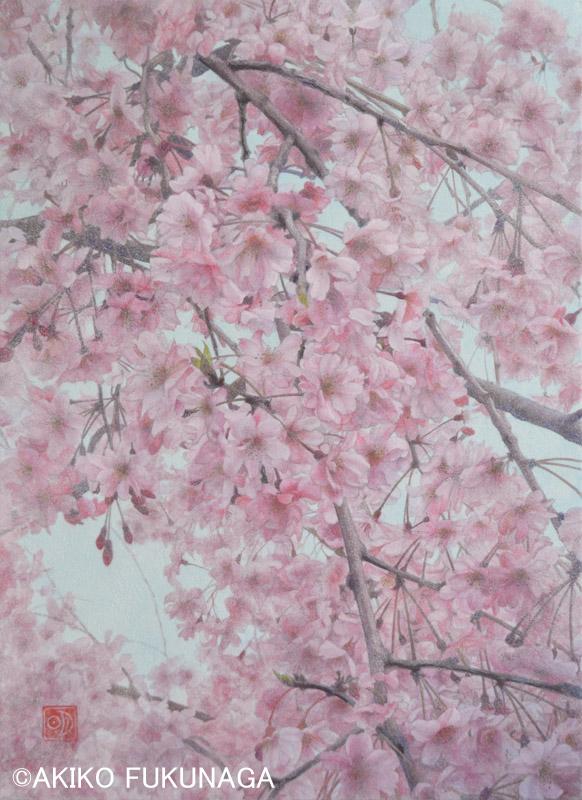 Flowers展終わりました_e0105782_15575751.jpg