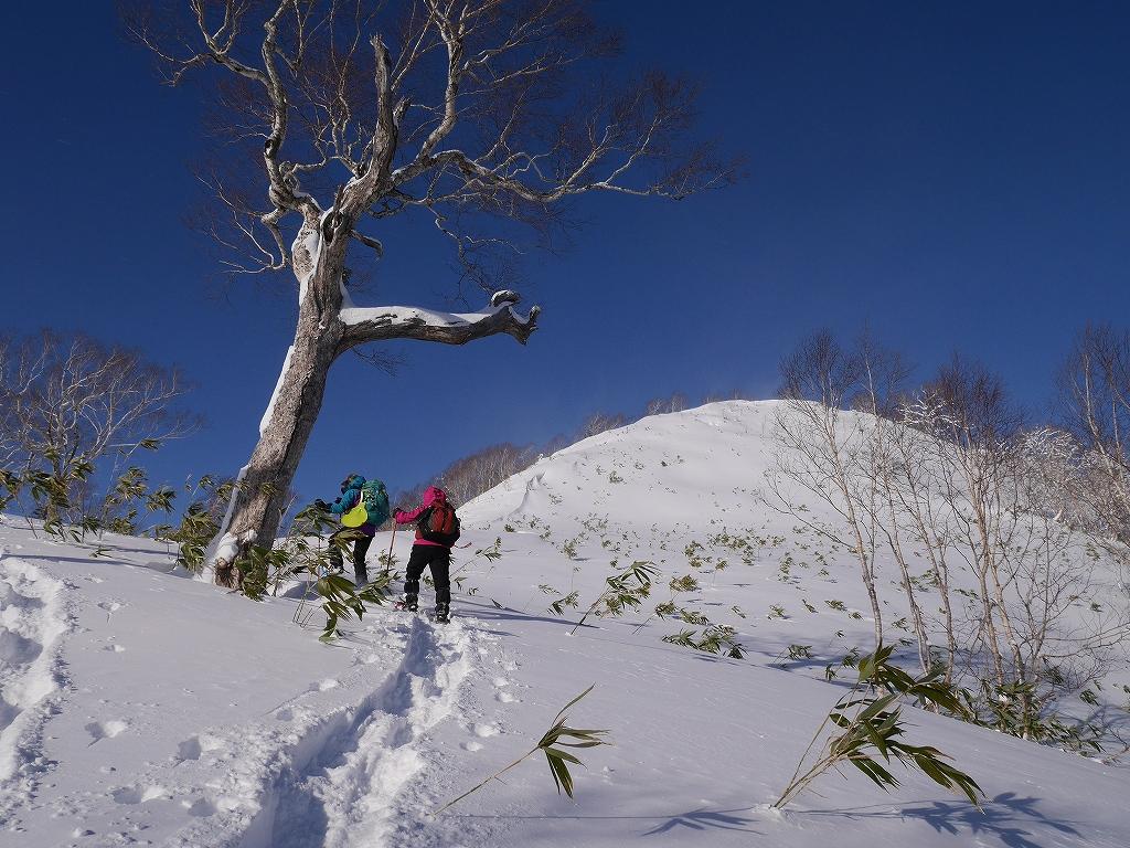 オコタンペ山、12月26日-速報版-_f0138096_13334633.jpg