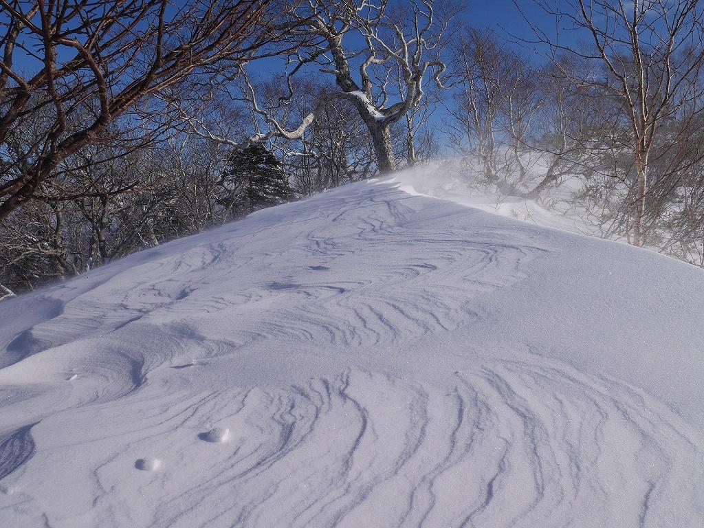オコタンペ山、12月26日-速報版-_f0138096_13343547.jpg
