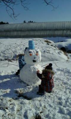 雪だるま完成_d0026905_11454467.jpg