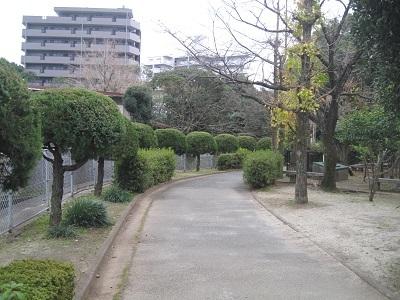 ☆上江津湖 文学の散歩道☆_b0228113_14595523.jpg