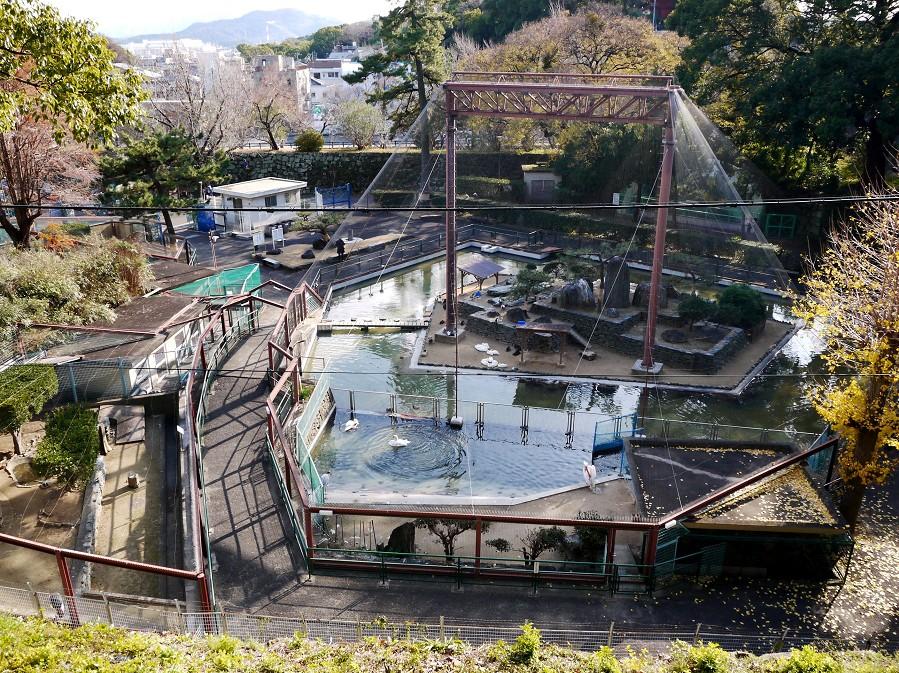 和歌山城公園にて_b0093754_20345485.jpg