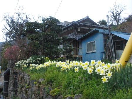中岳町 平屋_d0173687_1601262.jpg