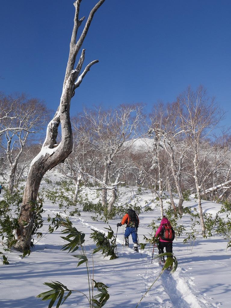 オコタンペ山、12月26日_f0138096_10515211.jpg