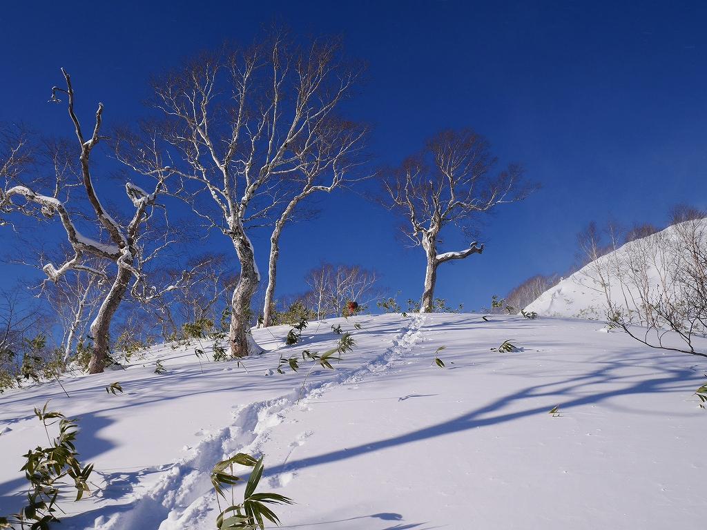 オコタンペ山、12月26日_f0138096_10521095.jpg