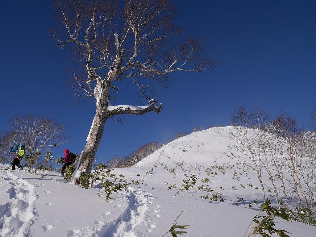 オコタンペ山、12月26日_f0138096_10522291.jpg