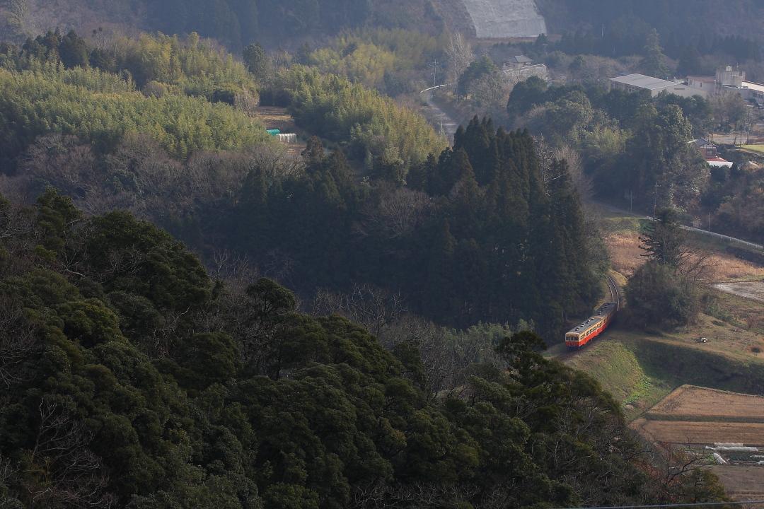 築堤を登る - 2014年冬・小湊鉄道 -  _b0190710_1427443.jpg