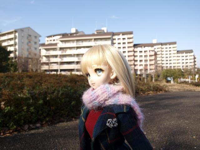 冬の公園を散歩_a0067420_17511745.jpg