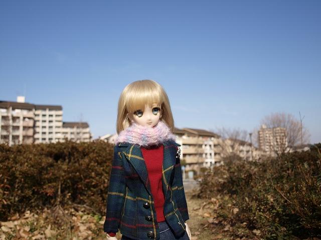 冬の公園を散歩_a0067420_17514929.jpg