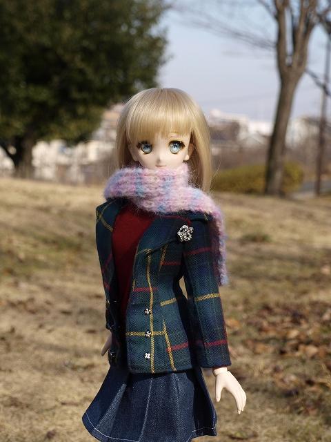 冬の公園を散歩_a0067420_1753193.jpg