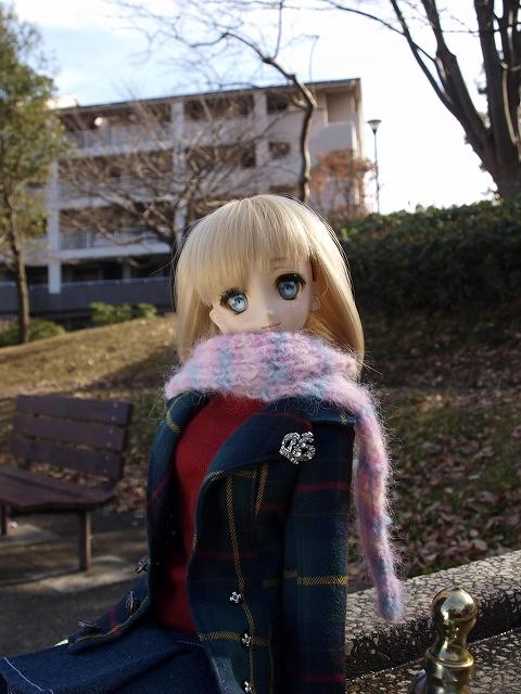 冬の公園を散歩_a0067420_17534893.jpg