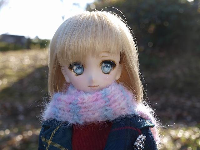 冬の公園を散歩_a0067420_17541230.jpg
