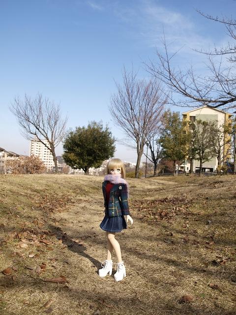 冬の公園を散歩_a0067420_17545857.jpg