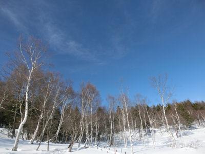 新マナスル山荘の「下味」_f0019247_21564753.jpg