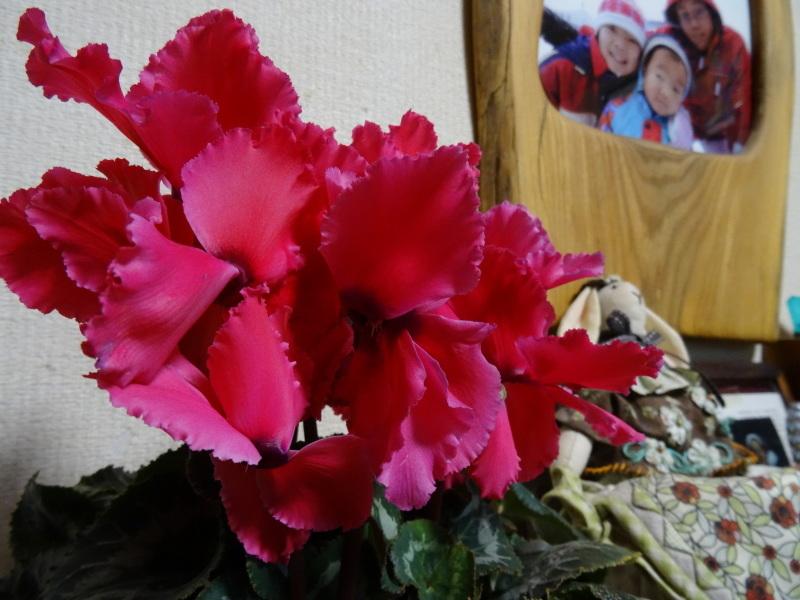 買い物のハシゴに同行     by     (TATE-misaki)_c0108460_20442733.jpg