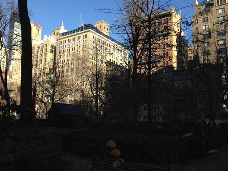 2014-12-27(NY時間) 今日も朝からいい天気_e0021965_11304474.jpg