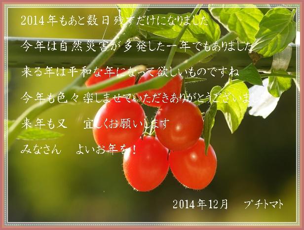 a0126676_1421132.jpg
