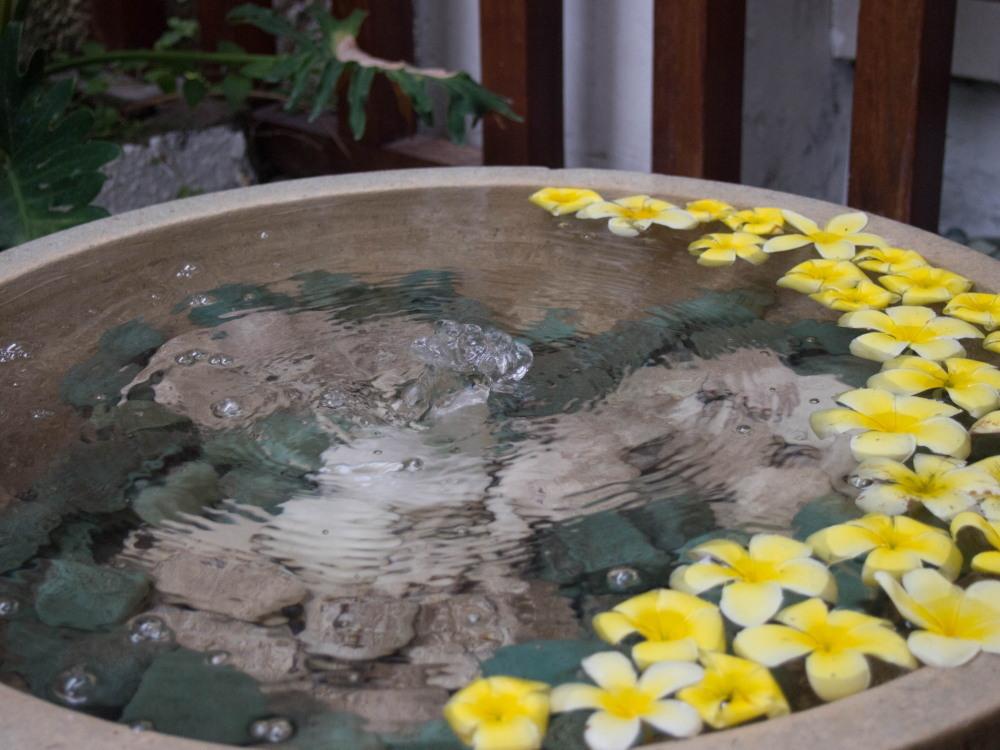2014ジャワ島バリ島シンガポールvol.8~ウブドの宿・カキアン(バリ島1)~_f0276498_11470579.jpg