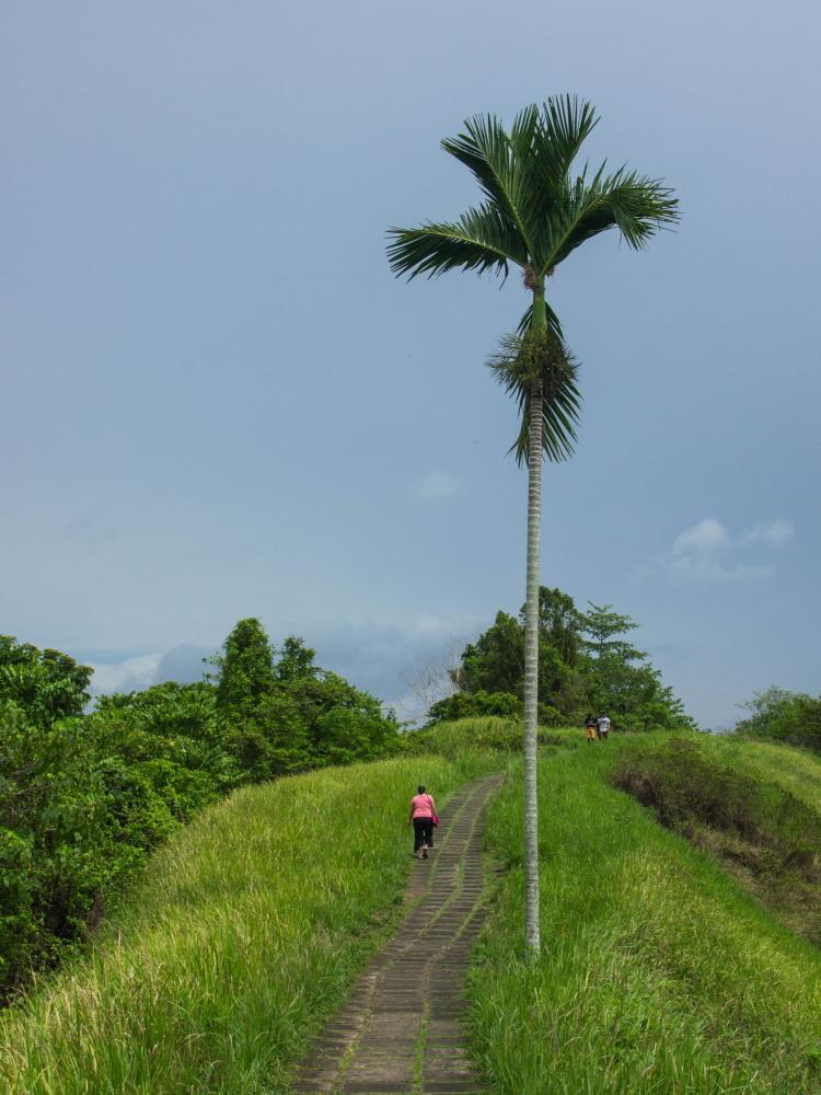 2014ジャワ島バリ島シンガポールvol.9~ウブド楽園の散歩道(バリ島2)~_f0276498_23565924.jpg