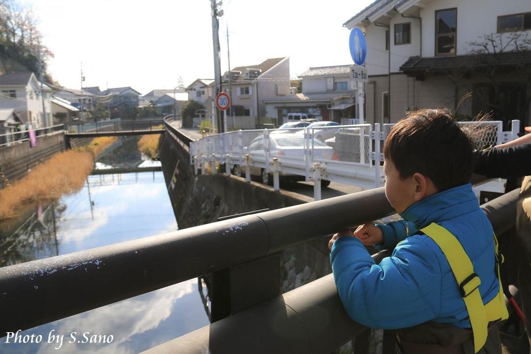 侍従川のクリーンアップ&調査(12月)_b0348205_14412455.jpg