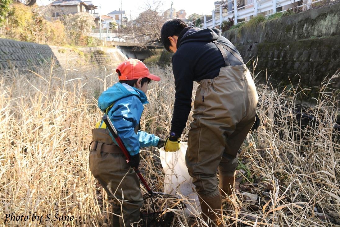 侍従川のクリーンアップ&調査(12月)_b0348205_14413395.jpg