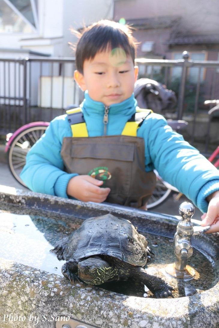 侍従川のクリーンアップ&調査(12月)_b0348205_14434053.jpg