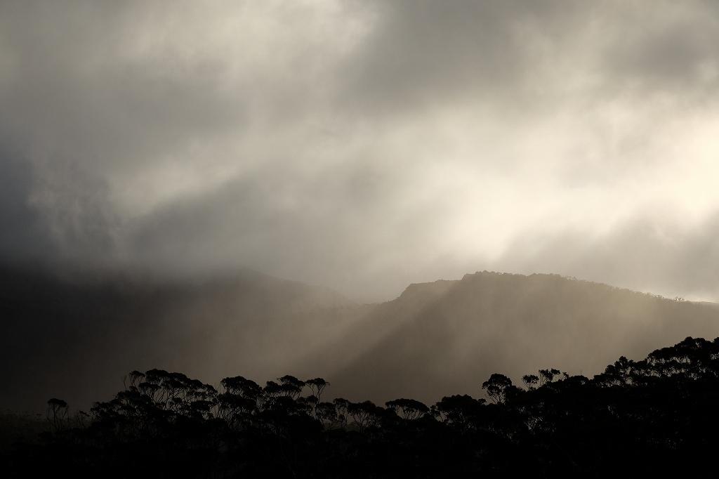 Spirit of Tasmaniaの時_f0050534_16400329.jpg