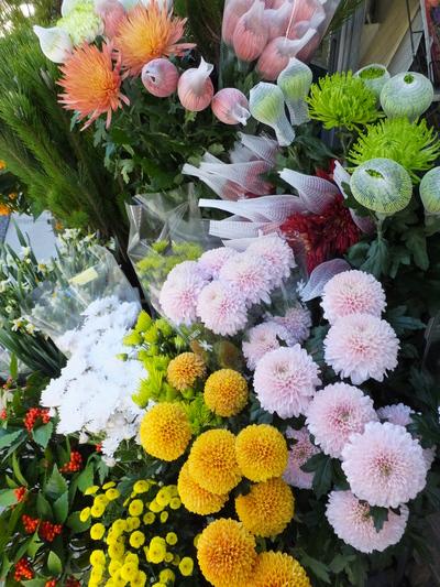 オークリーフ(お正月の花)_f0049672_11335530.jpg