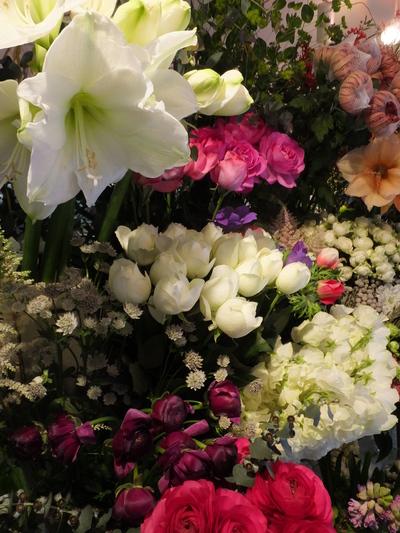 オークリーフ(お正月の花)_f0049672_11462885.jpg