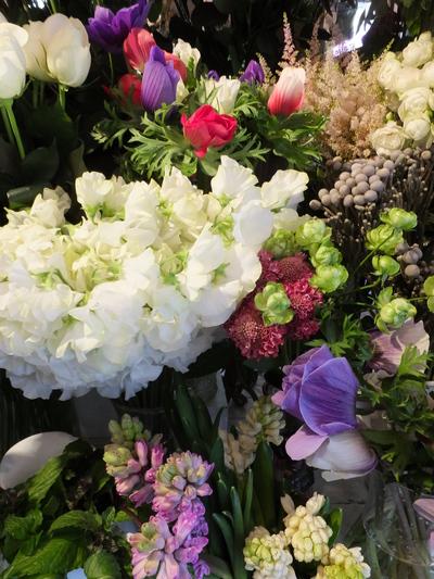 オークリーフ(お正月の花)_f0049672_11463566.jpg