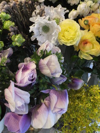オークリーフ(お正月の花)_f0049672_11464968.jpg