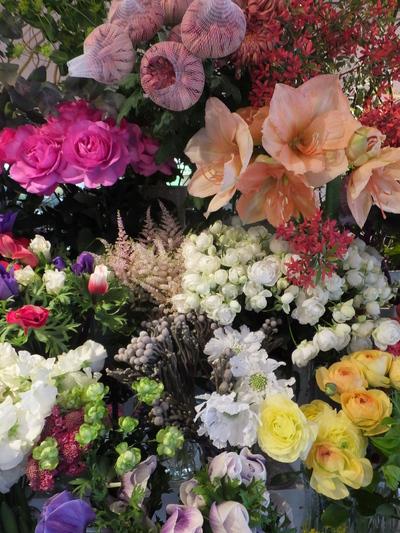 オークリーフ(お正月の花)_f0049672_11473436.jpg