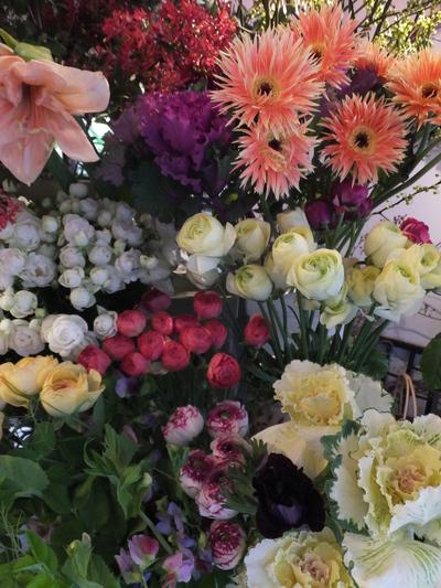 オークリーフ(お正月の花)_f0049672_1147416.jpg