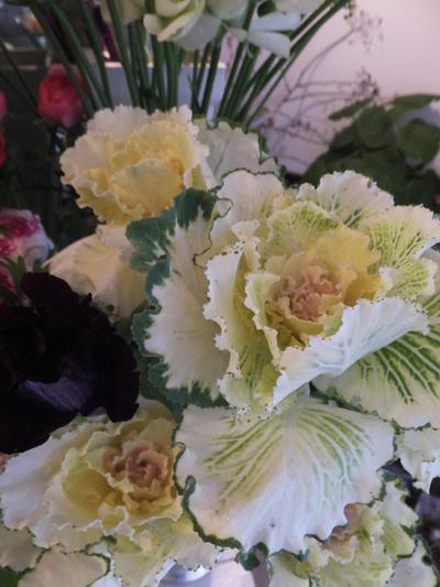 オークリーフ(お正月の花)_f0049672_11475956.jpg