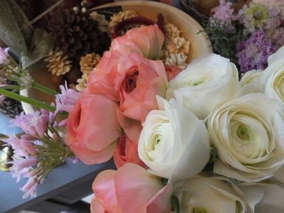 オークリーフ(お正月の花)_f0049672_11483953.jpg