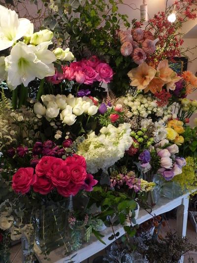 オークリーフ(お正月の花)_f0049672_11484675.jpg