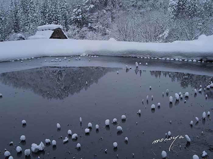 冬の田_c0085877_06572143.jpg