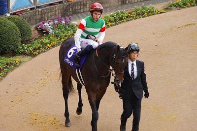 歴史的名牝が魅せた底力!有馬記念は、ジェンティルドンナが見事引退の花道を飾る!_b0015386_0525654.jpg