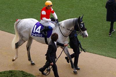 歴史的名牝が魅せた底力!有馬記念は、ジェンティルドンナが見事引退の花道を飾る!_b0015386_0533632.jpg