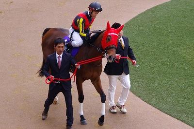 歴史的名牝が魅せた底力!有馬記念は、ジェンティルドンナが見事引退の花道を飾る!_b0015386_054296.jpg