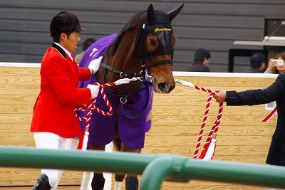 歴史的名牝が魅せた底力!有馬記念は、ジェンティルドンナが見事引退の花道を飾る!_b0015386_0544423.jpg