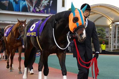 東京大賞典は、ホッコータルマエが人気に応え圧勝、堂々2連覇達成_b0015386_2359066.jpg