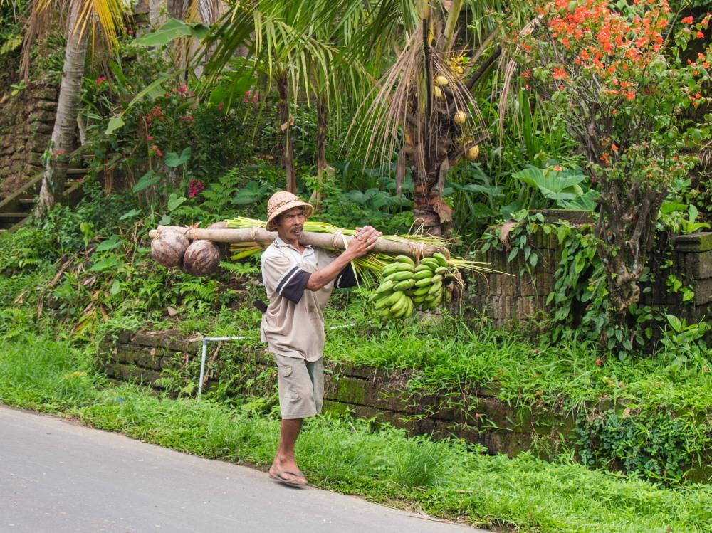 2014ジャワ島バリ島シンガポールvol.9~ウブド楽園の散歩道(バリ島2)~_f0276498_00052709.jpg