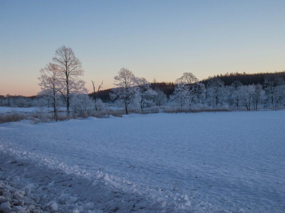 今年もあと3日・・「霧氷ツアー」が先日から始まっています。_f0276498_11074635.jpg