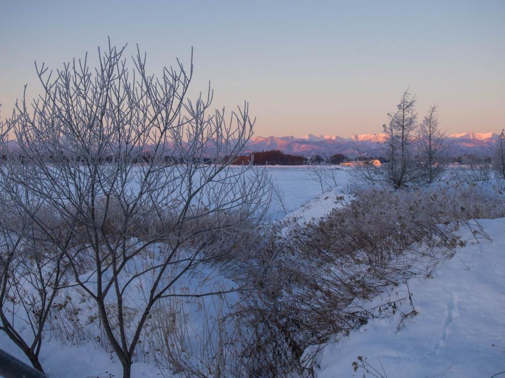 今年もあと3日・・「霧氷ツアー」が先日から始まっています。_f0276498_11081931.jpg