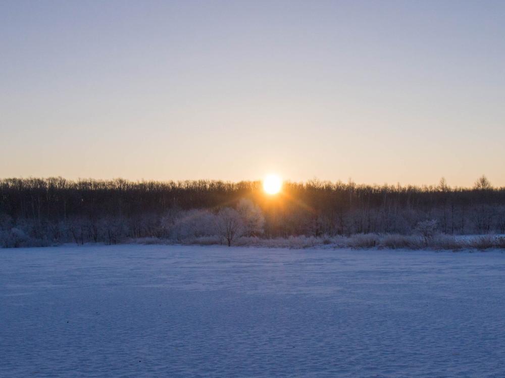 今年もあと3日・・「霧氷ツアー」が先日から始まっています。_f0276498_11083357.jpg