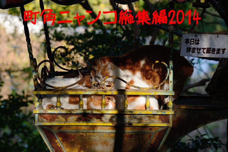 f0032011_18275478.jpg