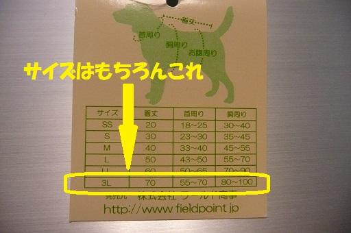 f0121712_763434.jpg