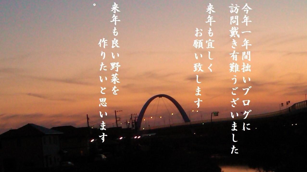 今年最後のブログ...故郷広島を思い..._b0137932_18265484.jpg